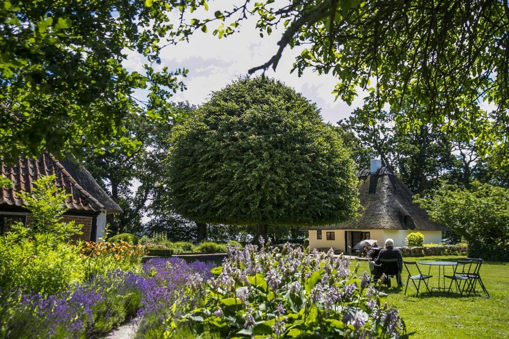 Bytræet I DE GAMLE HUSE