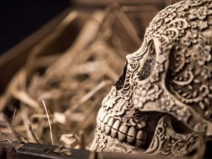 Skull with carved decorations