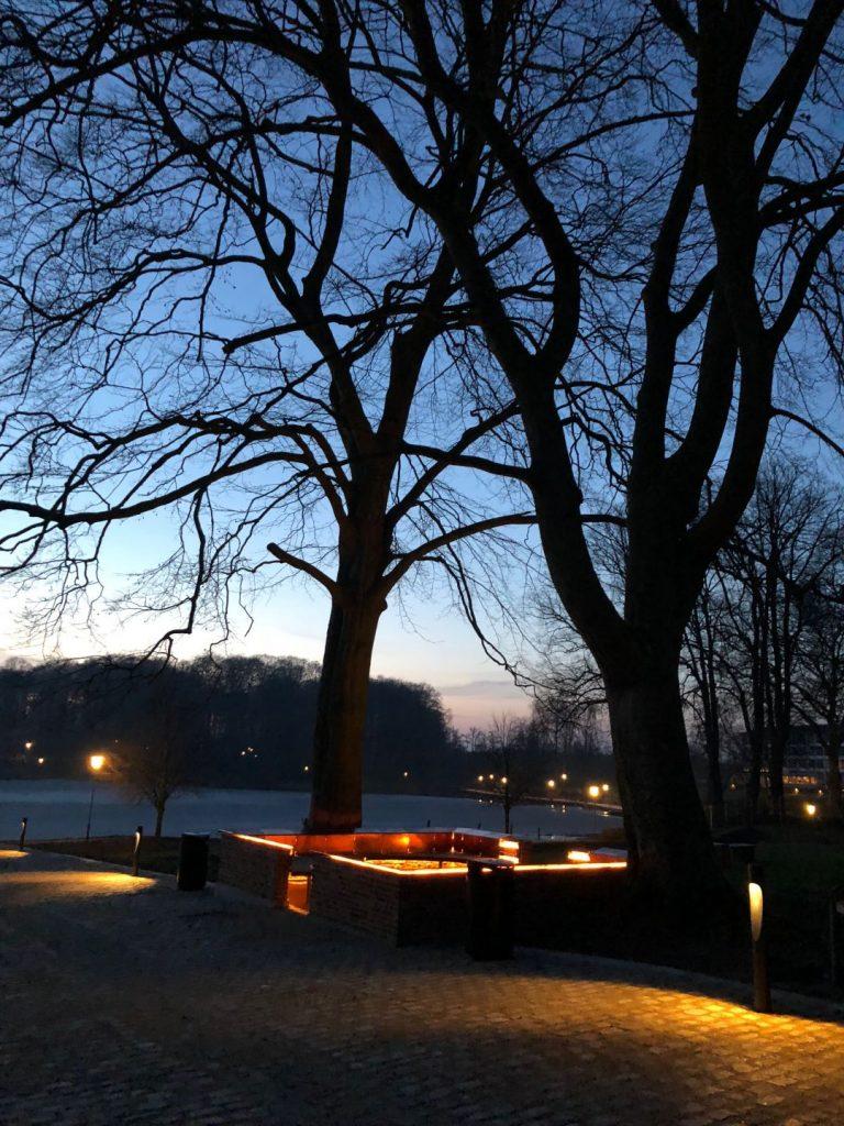 Klosterruinen med lys på om aftenen