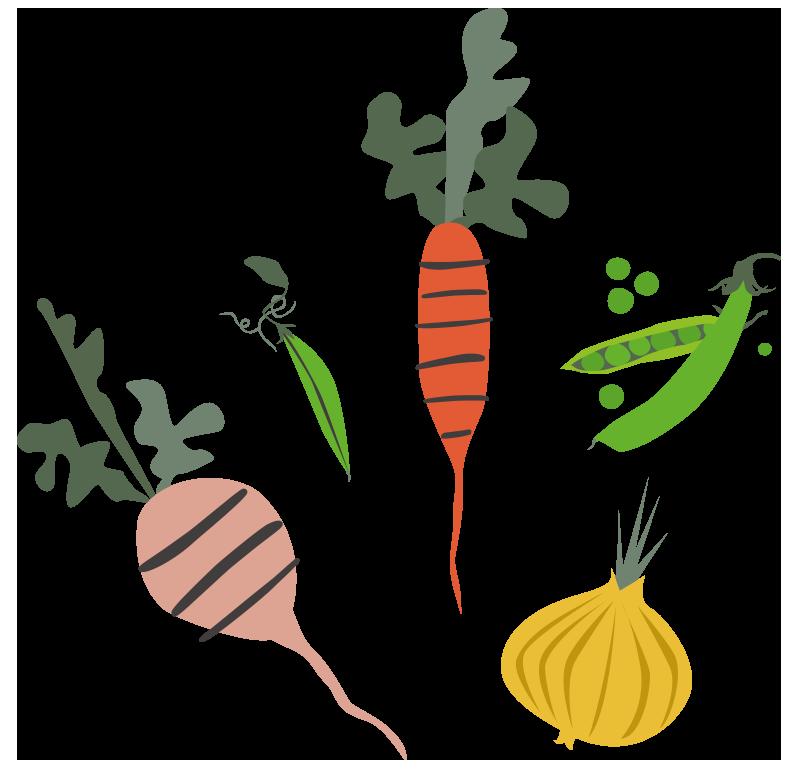 Tegning af grøntsager
