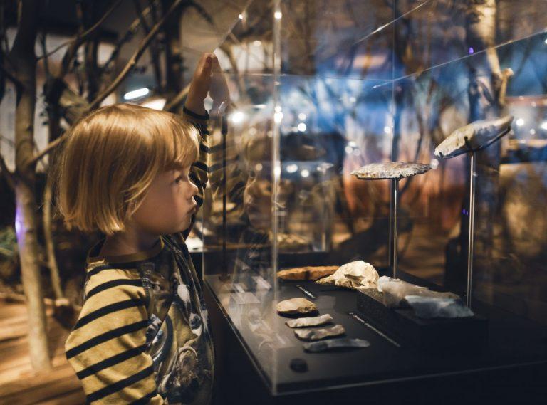 Barn kigger ind i montre