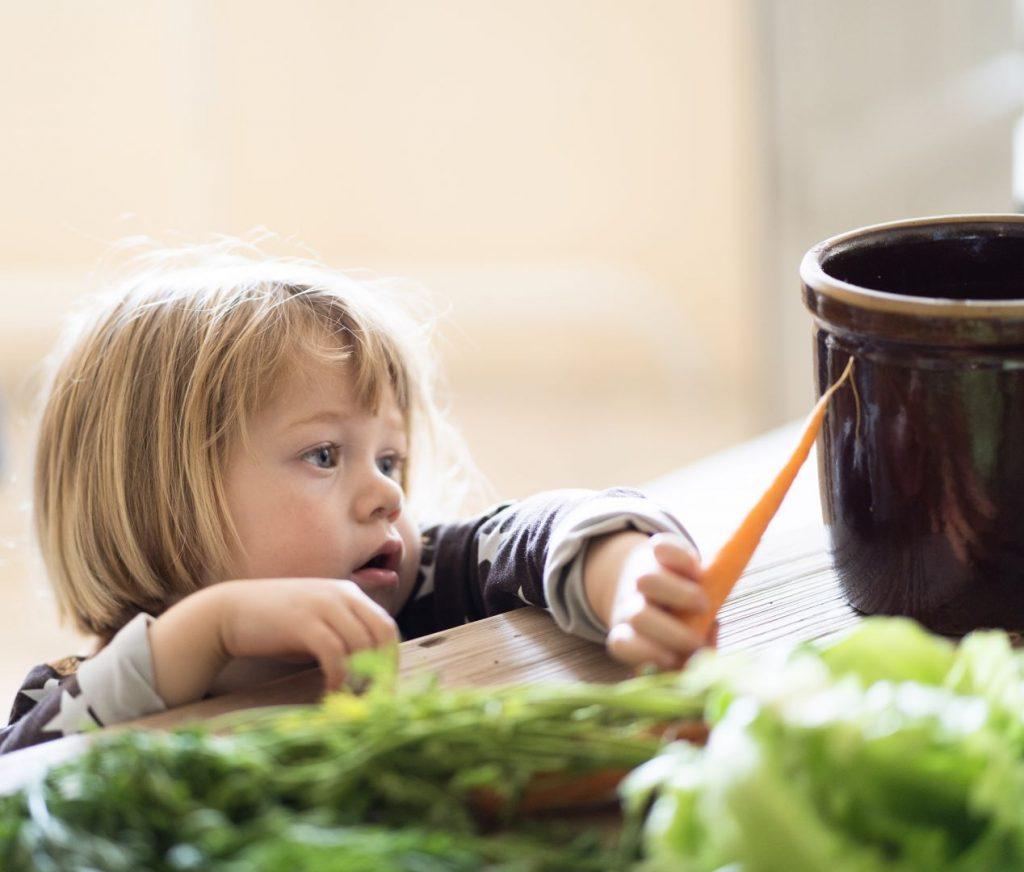 Barn med gulerod